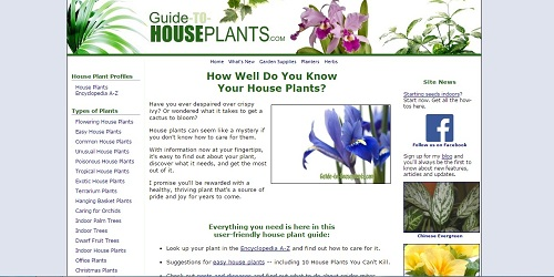 guide-to-houseplants.