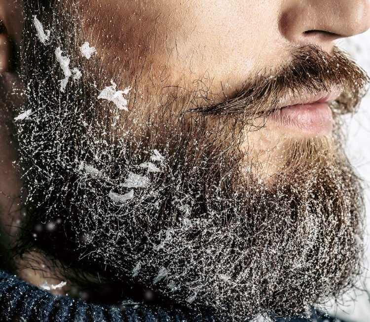 Stop Dandruff in Beard