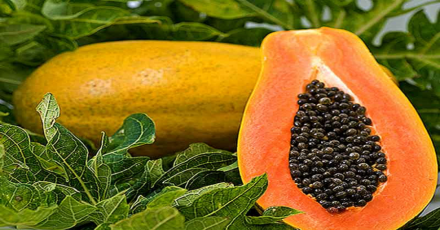 Major side effects of papaya
