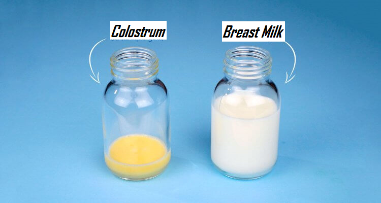 Difference between colostrum and mother's milk or breast milk