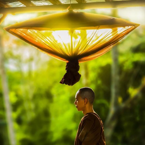 Monk buddha meditation