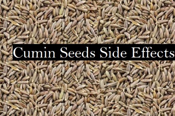 Cumin seeds side effects