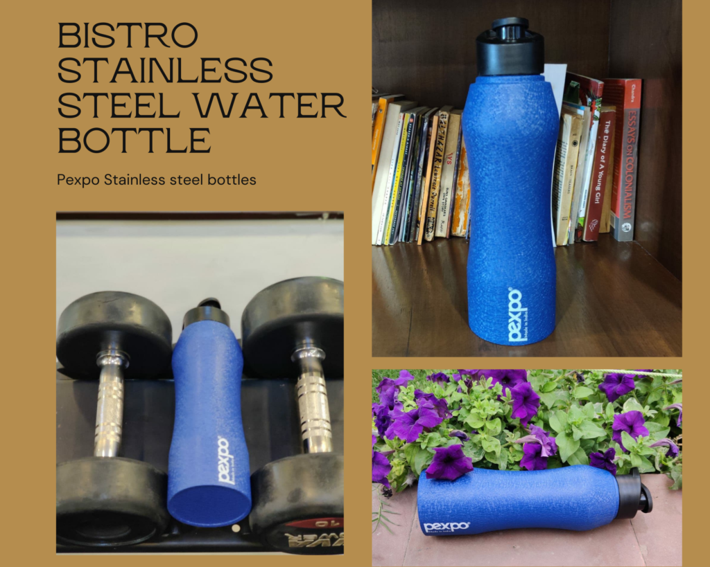 bistro stainless steel water bottle