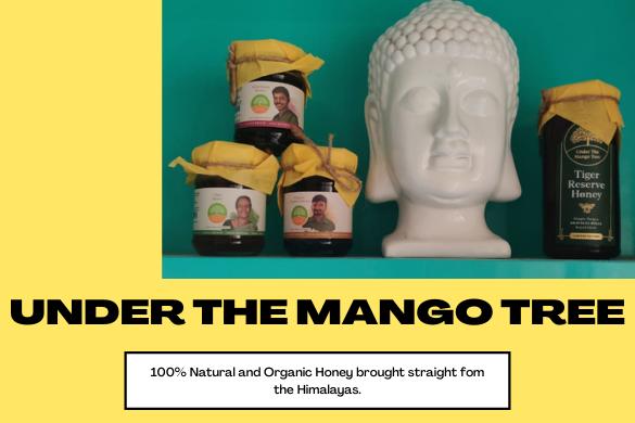 under the mango tree reviews